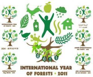 Rompicapo di 2011 Anno Internazionale delle Foreste
