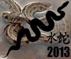 Rompicapo di 2013, l'anno del Serpente d'Acqua. Secondo il calendario cinese, dal 10 febbraio 2013 al 30 gennaio 2014