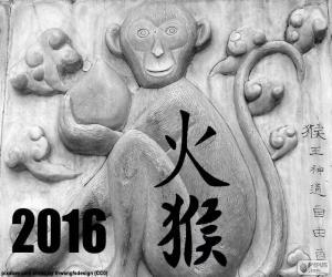 Rompicapo di 2016 anno cinese scimmia fuoco