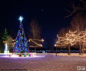 Rompicapo di Alberi illuminati, Natale