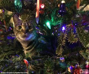 Rompicapo di Albero di Natale e del gatto