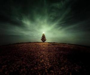 Rompicapo di Albero di Natale in Campo