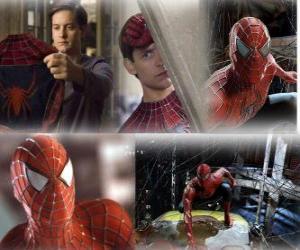 Rompicapo di Alcune immagini di Spiderman