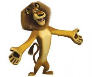 Rompicapo di Alex, il leone dil Zoo di Central Park di New York, con le braccia aperte