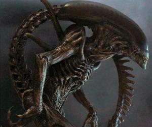 Rompicapo di Alien