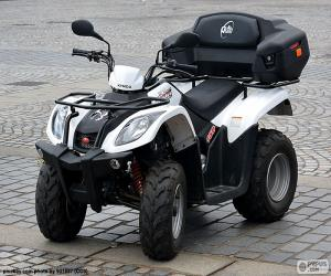 Rompicapo di All-terrain vehicle