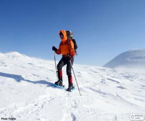 Rompicapo di Alpinista durante traversata