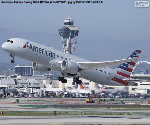 Rompicapo di American Airlines