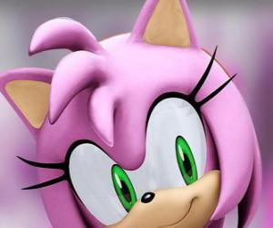Rompicapo di Amy Rose è un riccio rosa con gli occhi verdi, è follemente innamorato di Sonic