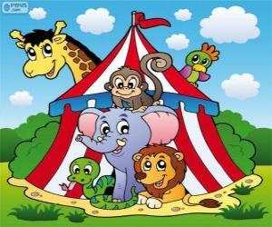 Rompicapo di Animali da circo