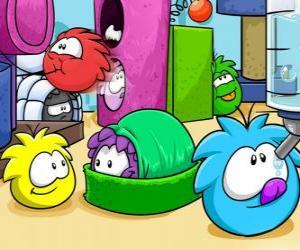 Rompicapo di Animali domestici Puffles nel Club Penguin