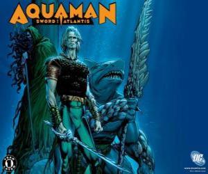 Rompicapo di Aquaman è stato uno dei membri fondatori del team di Justice League of America o JLA