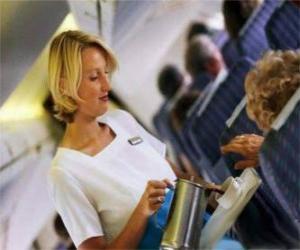 Rompicapo di Assistente di volo