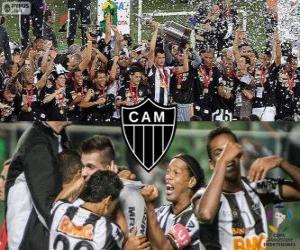 Rompicapo di Atlético Mineiro, Campione Copa Libertadores 2013