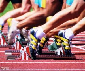 Rompicapo di Atleti preparati per l'uscita