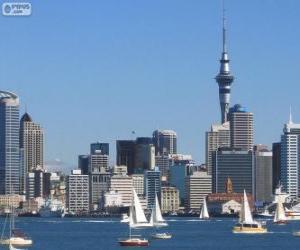 Rompicapo di Auckland, Nuova Zelanda