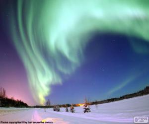 Rompicapo di Aurora polare