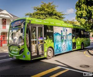 Rompicapo di Autobus da Auckland, NZ