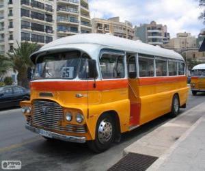 Rompicapo di Autobus di Malta