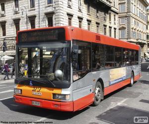 Rompicapo di Autobus urbano di Roma