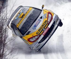 Rompicapo di Automobile Rally sulla neve