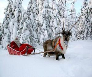 Rompicapo di Babbo Natale in slitta con le renne sulla neve