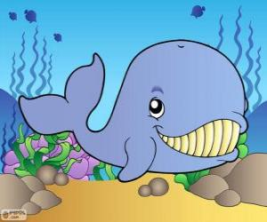 Rompicapo di Balena sorridente