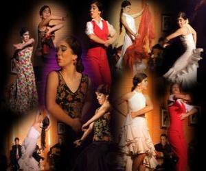 Rompicapo di Ballerina di flamenco. Flamenco ha le sue origini nel folklore del popolo zingaro e la cultura popolare di Andalusia, Spagna