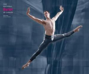 Rompicapo di Balletto - Ballerin in azione