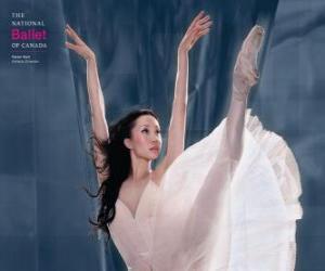 Rompicapo di Balletto - Ballerina in azione