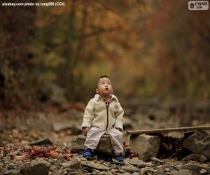 Rompicapo di Bambino nella foresta