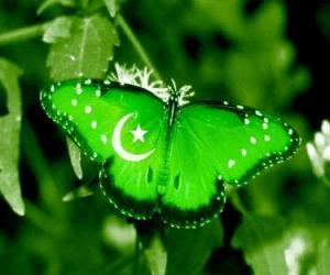 Rompicapo di Bandiera del Pakistan o Pachistan