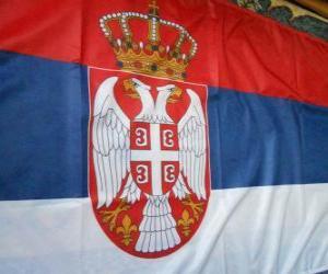 Rompicapo di Bandiera della Serbia