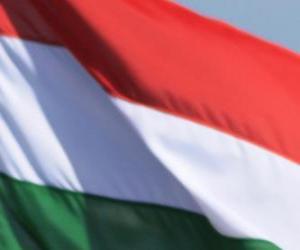 Rompicapo di Bandiera dell'Ungheria