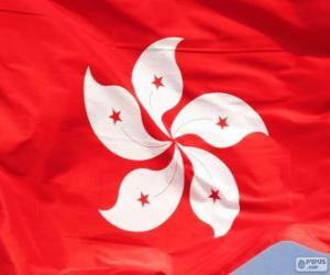 Rompicapo di Bandiera di Hong Kong