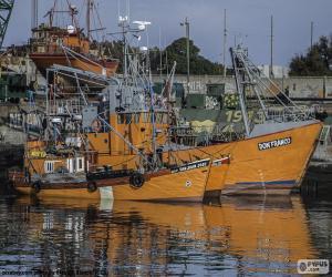 Rompicapo di Barche per la pesca