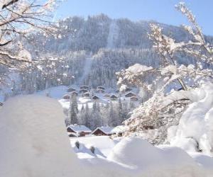Rompicapo di Bellissimo paesaggio completamente nevicato