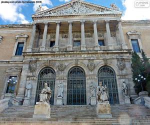 Rompicapo di Biblioteca nazionale di Spagna, Madrid