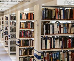Rompicapo di Biblioteca