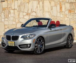 Rompicapo di BMW serie 2 Cabrio 2015