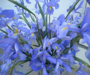 Rompicapo di Bouquet di gigli