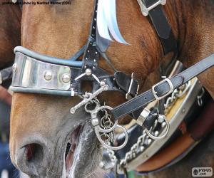 Rompicapo di Briglia di un cavallo