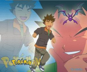 Rompicapo di Brock, originariamente il leader della Pewter City Gym (peltro), specializzato in rock-Pokémon tipo.
