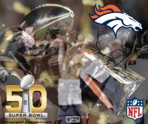 Rompicapo di Broncos, campione Super Bowl 16