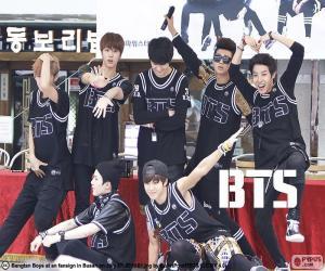 Rompicapo di BTS, Bangtan Boys