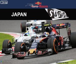 Rompicapo di C. Sainz Jr., GP Giappone 2016