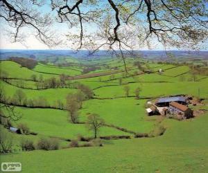 Rompicapo di Campagna del Devon, Gran Bretagna