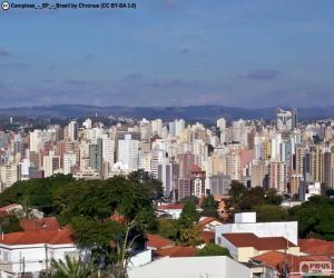 Rompicapo di Campinas, Brasile