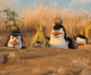 Rompicapo di Camuffata Penguins
