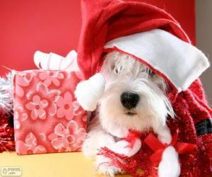 Rompicapo di Cane con un cappello di Babbo Natale e il suo regalo